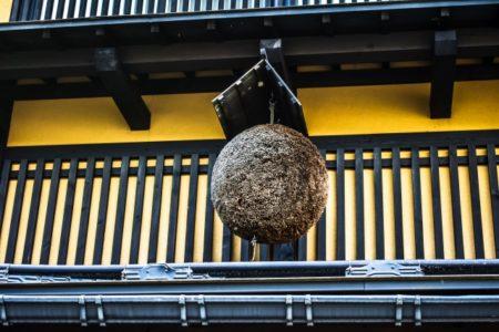 【酒好き新潟旅行者必見】長岡駅から30分圏内で行けちゃう酒蔵 5選