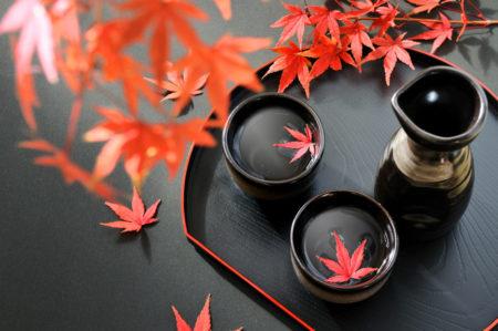 【金沢観光におすすめ】白山近辺にある日本酒好きなら訪問したいおすすめ酒蔵をご紹介 7選