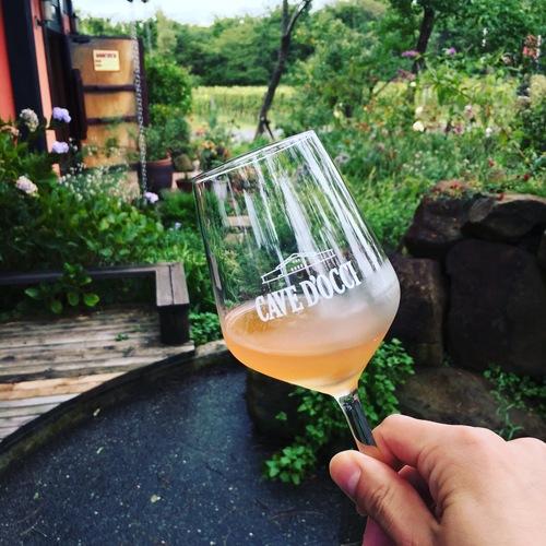 【美味しい日本ワイン】独立系の草分け的存在の新潟のワイナリー「カーブドッチ・ワイナリー」に行ってきた!
