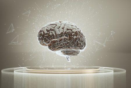 脳が小さいと飲酒量が増える?!