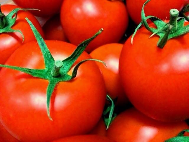 トマトが二日酔いに効果的な科学的な理由とは?