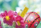 「酒楽。」のイースター日本酒セット 3月14日(土)予約開始